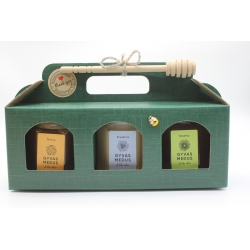 Stylish honey gift bag